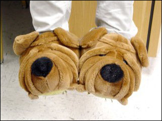 Thomas's slippers are named Apollo (left), and Zeus!