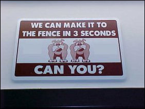 If you want to run like the big dogs, you have to make it to the fence in three seconds. Can you?