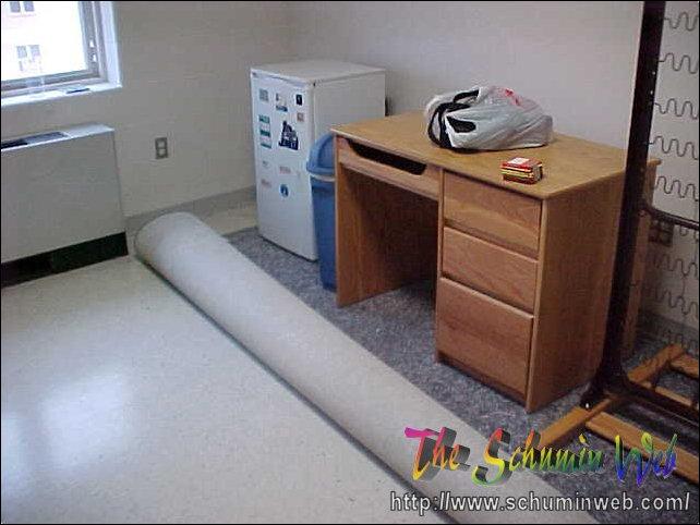 Dorm Room Carpet Order To Size